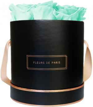 The Rosé Gold Collection Minty Green Medium schwarz - rund