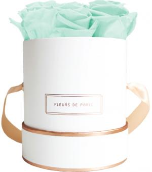 The Rosé Gold Collection Minty Green Small weiss - rund