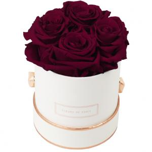 The Rosé Gold Collection Velvet Plum Small weiss - rund
